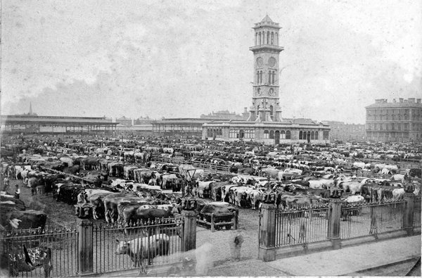 The clock tower served as the command centre of the cattle market. The buildings around the tower were bank and telegraph offices